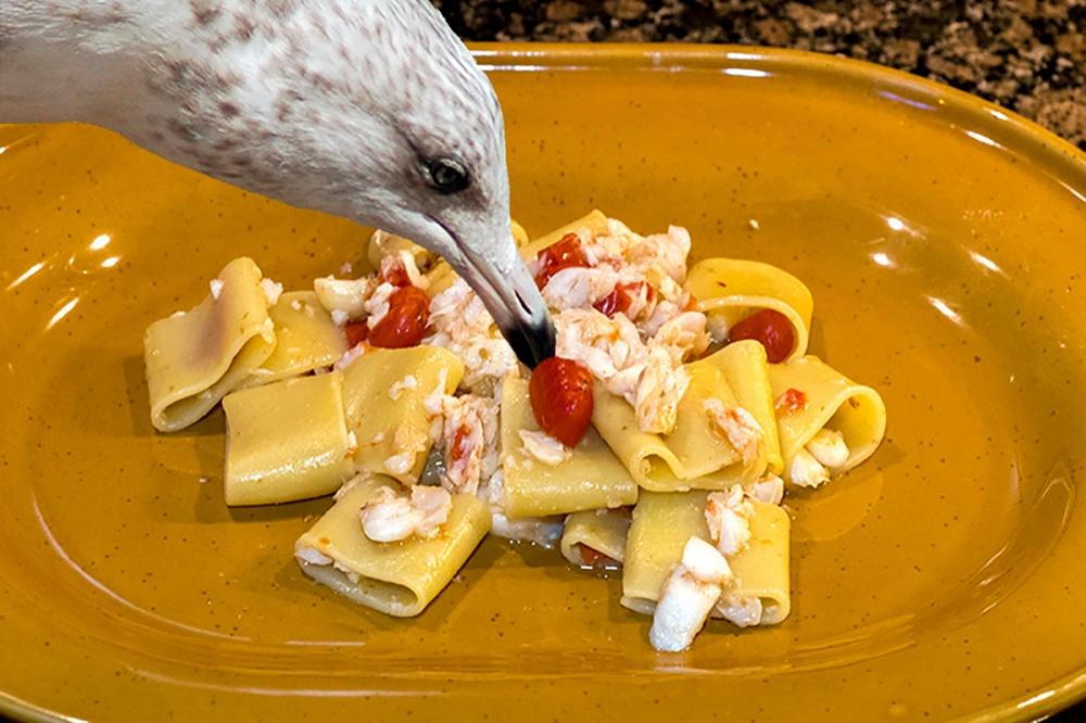 Paccheri merluzzo e datterini per blog 06