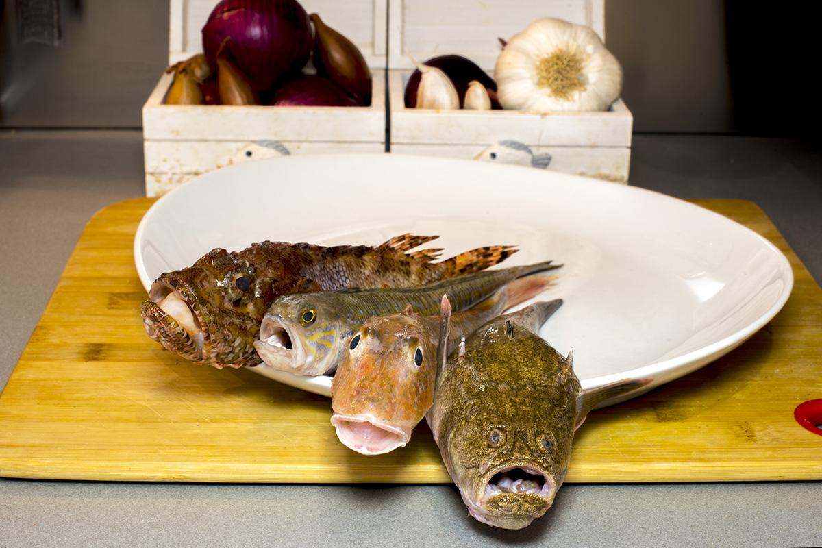 Zuppa di pesce 00.jpg